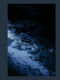 【古本】フィリップ・カサカ写真集 : FILIPE CASACA : BLUE MUD SAWMP【サイン入】
