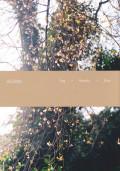 オラ・リンダル写真集 : OLA RINDAL : DAG MADOKA MIYA