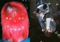 【サイン入】大山マリモ&池野詩織写真集 : MARIMO OHYAMA & SHIORI IKENO : SPICY PROOF