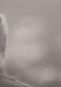 【古本】オラ・リンダル写真集 : OLA RINDAL : BLINDNESS (Pictures for another untold story)