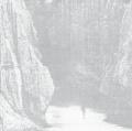 柳沢信写真集 : SHIN YANAGISAWA : UNTITLED