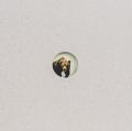 �ڥ��������ۥ��饦�����ԥҥ顼�̿��� : KLAUS PICHLER : SKELETONS IN THE CLOSET