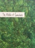 ���ࡦ�ϥꥹ�̿��� : SAM HARRIS : THE MIDDLE OF SOMEWHERE