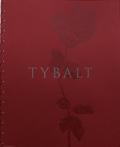 ����㡼�ɡ����륹�ȼ̿��� : TYBALT : A LIMITED EDITION CINE-ZINE BY RICHARD GERST