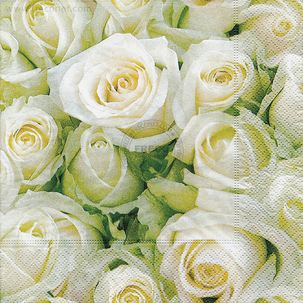 Paper+Design ペーパーナプキン <ランチ> White roses(21454)【クロネコDM便OK】