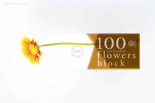 100 flowers block メモブロック帳 ガーベラオレンジ(YKP90-0768)【クロネコDM便OK】