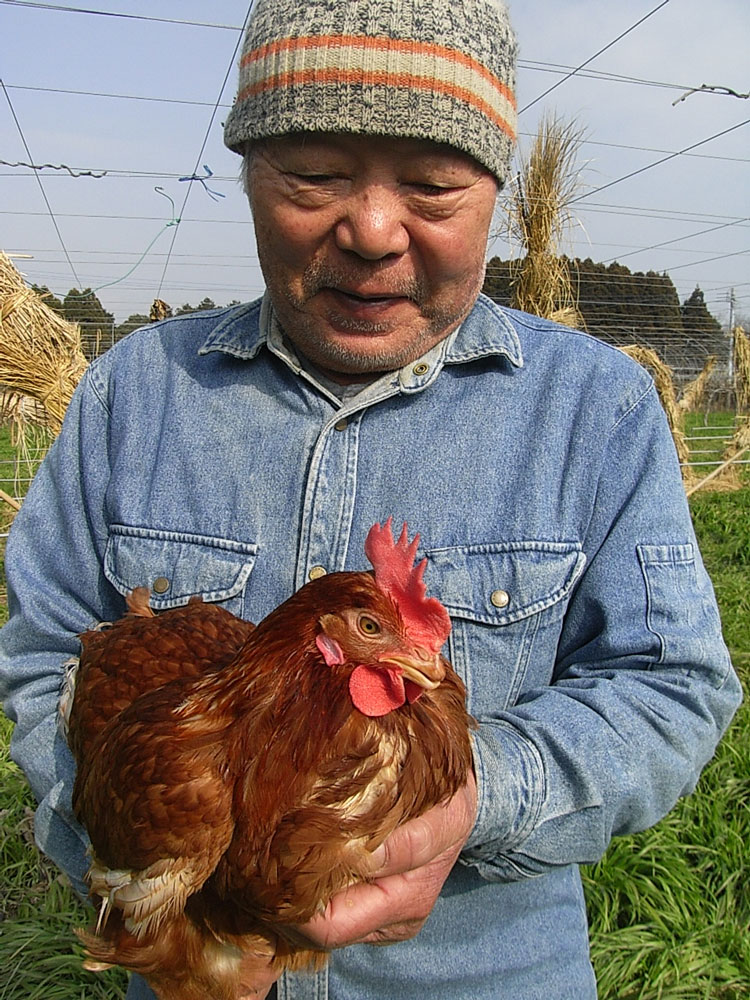 農園のフルーツとEM飼料で育てた滋養卵 (20個)