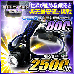 LED �إåɥ饤�� LED�饤�� �ե�å���饤�� MAX2500LM(�롼���) �ȼ͵�Υ800�᡼�ȥ� CREE�� THE WORLD �����ɿ� fl-sh009