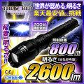 LED�������� LED�ϥ�ǥ��饤�� ����2600�롼��� ���ɥ����ॿ���� ���ż� �����ȥɥ� �ɺ� CREE�� �����η����ѥ饤�� fl-1300lmz