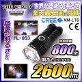 LED�������� LED�ϥ�ǥ��饤�� ����2600�롼��� �����ȥɥ� �ɺ� CREE�� �����η����ѥ饤�� fl-s024