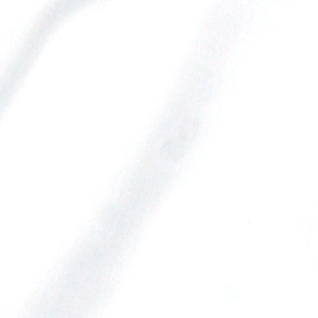GALLIPOLIイタリア製無地ホワイト無地カッタウェイ長袖ストレッチカジュアルシャツ  550661-108