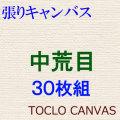 張りキャンバス 中荒目 F6 30枚組 [油彩用 桐木枠]