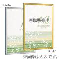用紙フレーム B016  (2色から選択)[用紙・賞状額縁]