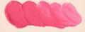 ホルベイン油絵具 ブリリアント ピンク