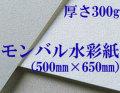 ���Х��̻桡���ܡ��300g�� 500mm��650mm