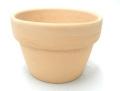 素焼き鉢 4.0号 α型 アルファ 中深 10枚セット 洋蘭 カトレア 原種