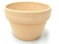 素焼き鉢 4.5号 α型 アルファ 中深 6枚セット 洋蘭 カトレア 原種