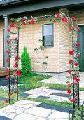 日本製 スライドフラワーアーチ幅広 バラアーチ 薔薇アーチ 高さ210cm