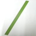 グリーン鉄線 3.2mm 45cm 10本 蘭支柱 洋蘭 カトレア 胡蝶蘭
