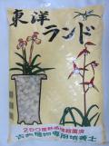東洋ランド 18L 大粒 古典植物 春蘭 寒蘭 熱処理済