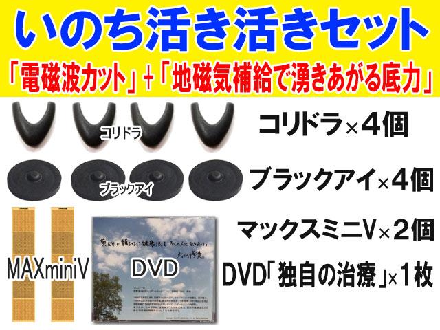 いのち活き活きセットDVD付きmain (top)