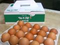 つまんでご卵(20個箱)