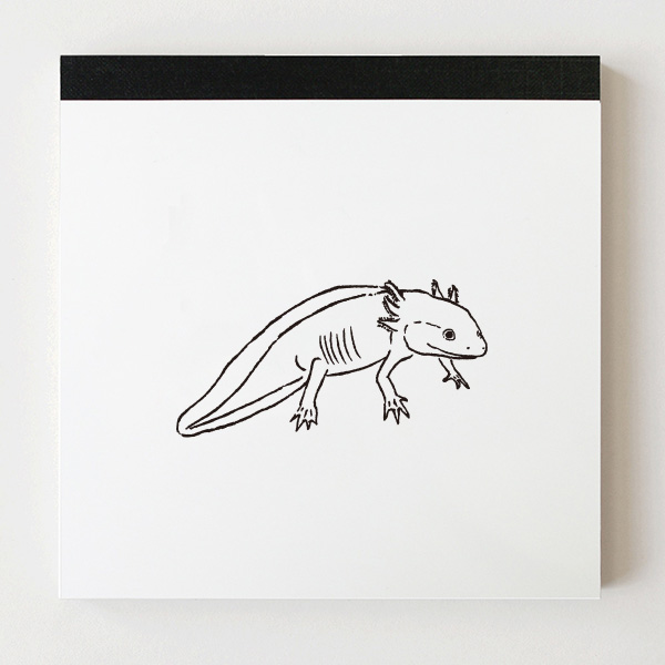 Animal Series メモパッド・スクエア<ウーパールーパー>