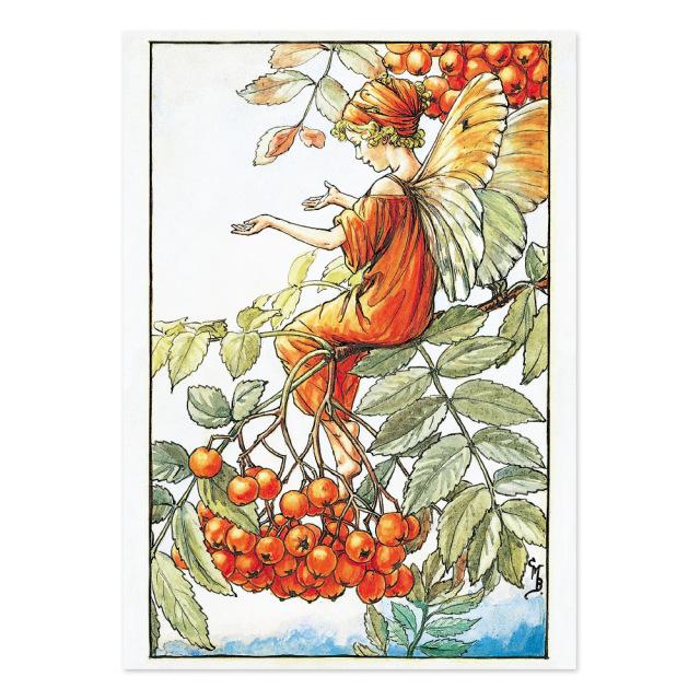 FLOWER FAIRIES ポストカード<Mountain Ash Fairy>