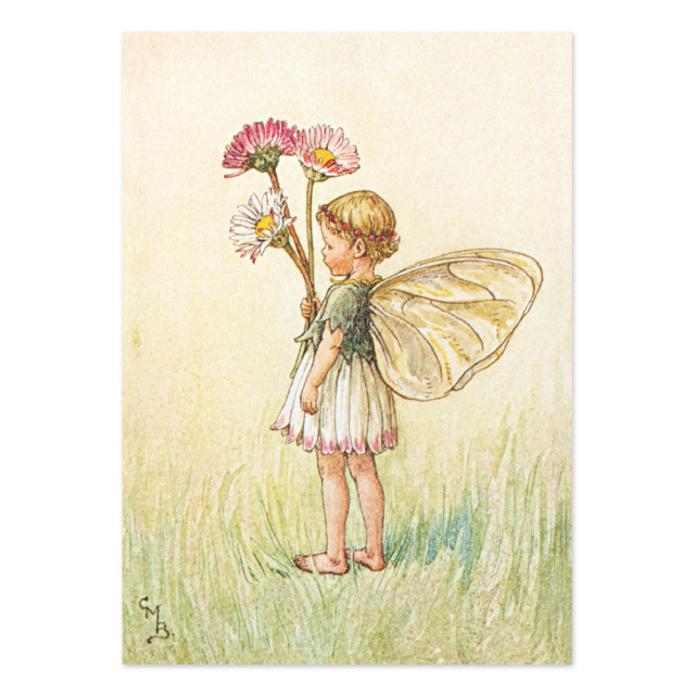 FLOWER FAIRIES ポストカード<Daisy Fairy>
