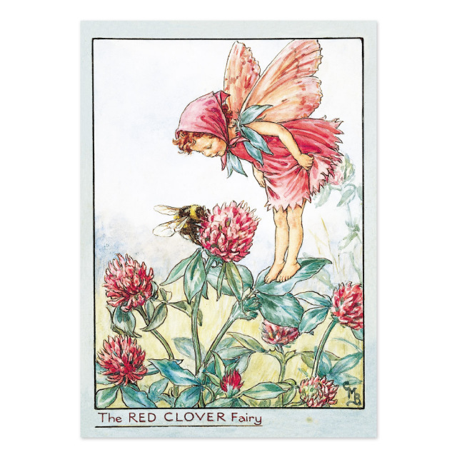 FLOWER FAIRIES ポストカード<The Red Clover Fairy>