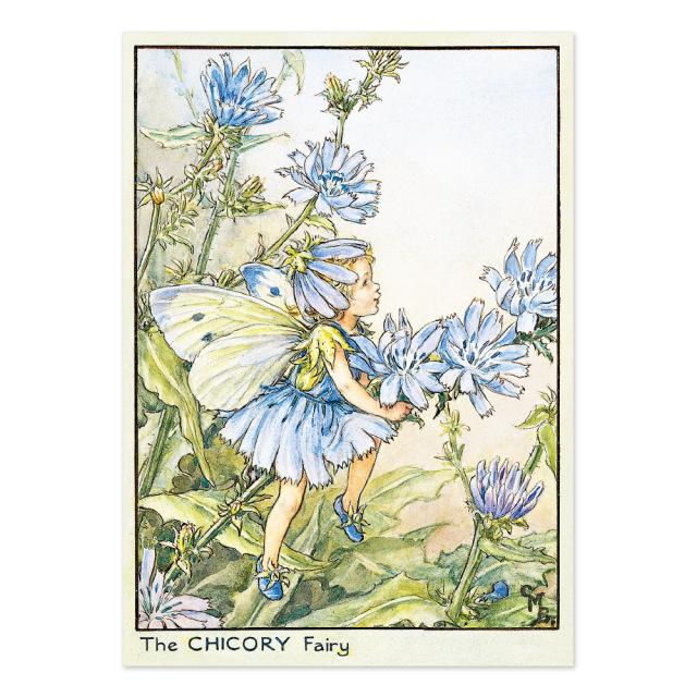 FLOWER FAIRIES ポストカード<The Chicory Fairy>