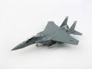 hogan wings 1/200 F-15E アメリカ空軍 第336戦闘航空団 第12空軍司令官塗装機
