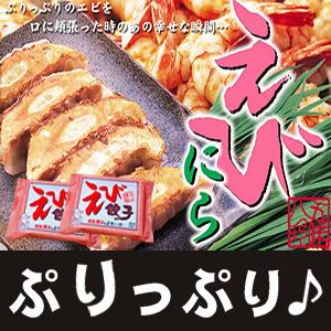 えび餃子 28個(14個×2P)【浜松餃子の五味八珍】