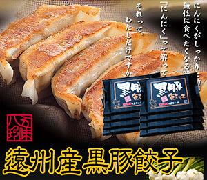 黒豚餃子 112個入(14個×8P)【浜松餃子の五味八珍】