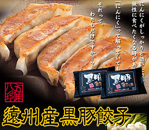 黒豚餃子 28個入(14個×2P)【浜松餃子の五味八珍】
