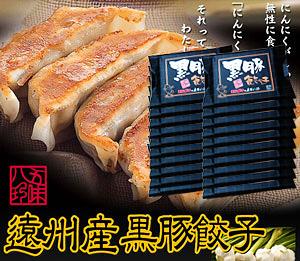 黒豚餃子 280個入(14個×20P)【浜松餃子の五味八珍】