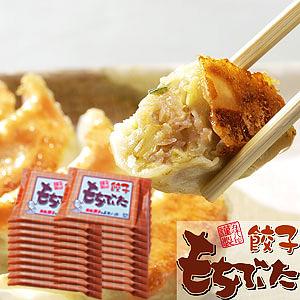 浜松もちぶた餃子280個入(14個×20P)【浜松餃子の五味八珍】
