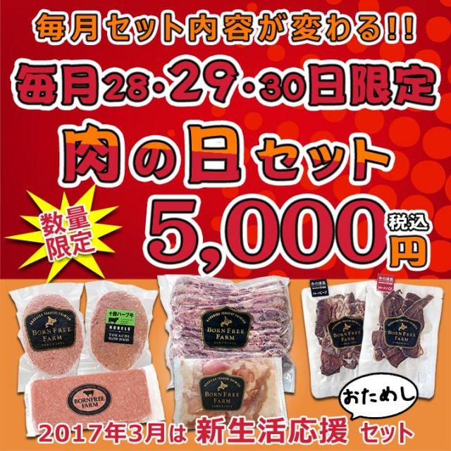 肉の日セット【1703】