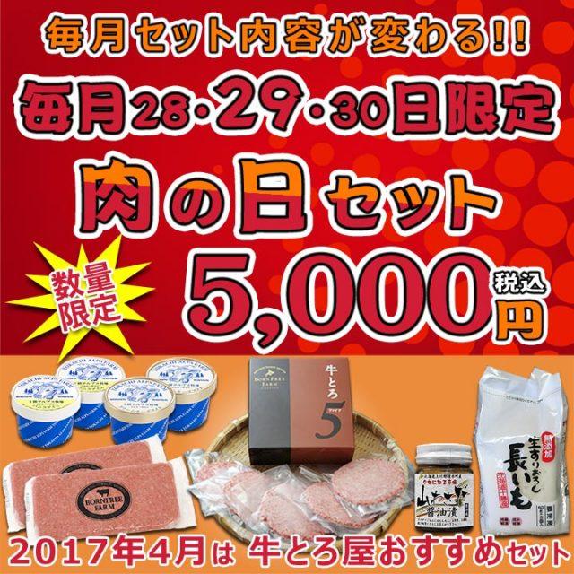 肉の日セット【1704】