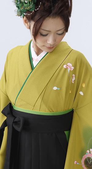 ひわ色 桜【袴レンタル着物】K2032