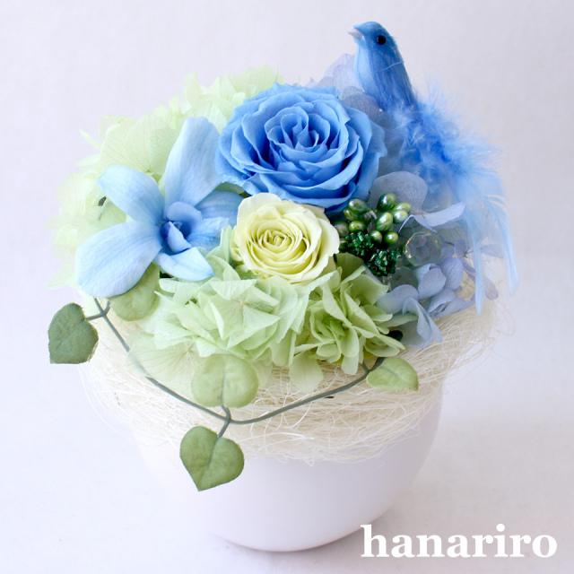 アレンジ「しあわせの青い鳥(ブルーS)」/プリザーブドフラワーギフト  【送料無料♪】