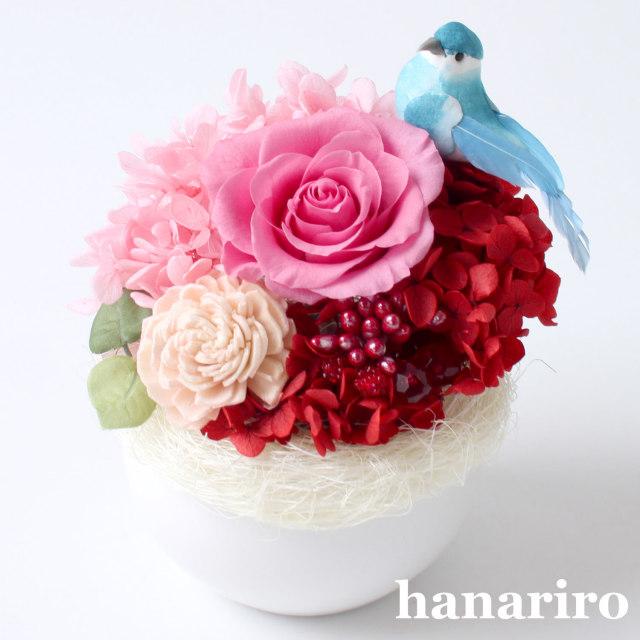 アレンジ「しあわせの青い鳥(赤ピンクミニ)」/プリザーブドフラワーギフト  【送料無料♪】