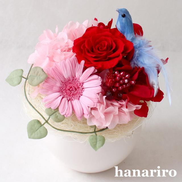 アレンジ「しあわせの青い鳥(赤ピンクS)」/プリザーブドフラワーギフト  【送料無料♪】