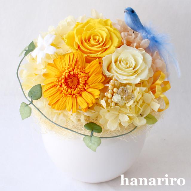 アレンジ「しあわせの青い鳥(黄色オレンジL)」/プリザーブドフラワーギフト  【送料無料♪】