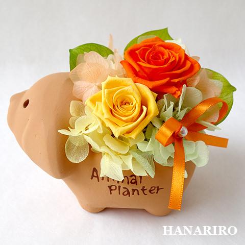 アレンジ「イヌさんアレンジ」/プリザーブドフラワーギフト  【送料無料♪】