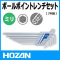HOZAN W-110