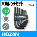 HOZAN W-96