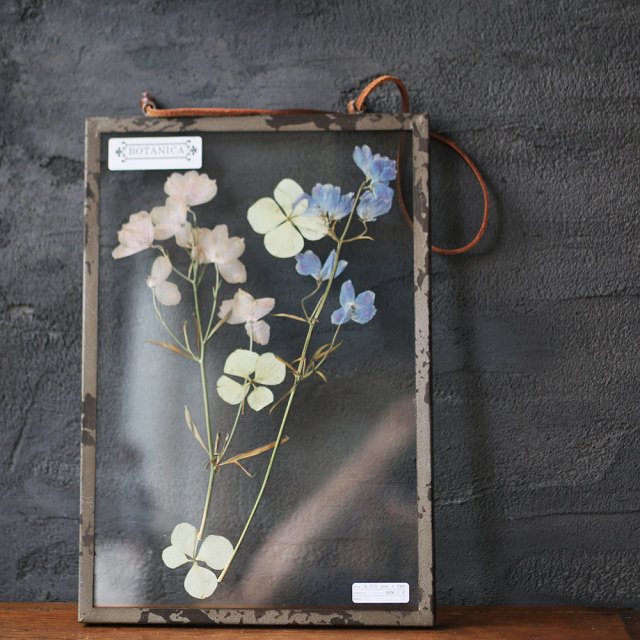 Pressed Flower Frame 《A》