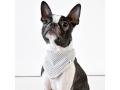バンダナ Doca Pet(ドカペット)|小型犬用、中型犬用バンダナ、ドッグスカーフ、おしゃれ用アクセサリー|犬グッズ・犬用品通販HAU