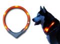 犬用LEDライト、夜のお散歩用交通安全グッズ、光る首輪| LEUCHTIE Pro (犬用セーフティーライト/プロ) |犬グッズ通販HAU